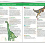 Dinosaures 100 pcs + livret